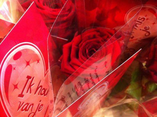 Vaders liefdesbrief met rozen evangelisatie 2